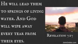 For the Lamb at the center of the throne will be their shepherd;'he will lead them to springs of living water.'[b] 'And God will wipe away every tear from their eyes.'[
